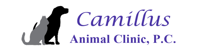 Camillus Animal Clinic